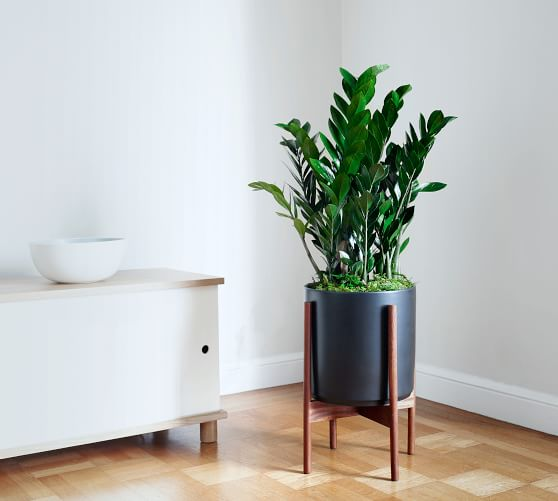 Modern Black Ceramic Indoor Planters