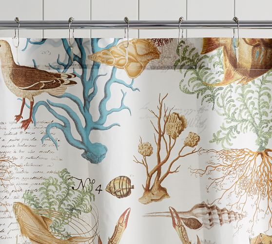 Shower Curtain Shower Curtains Pottery Barn