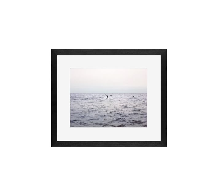 Pacific Whale Watching Framed Print By Jane Wilder 13 X
