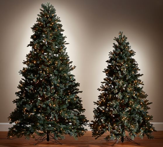 Lit Faux Blue Spruce Christmas Trees Pottery Barn