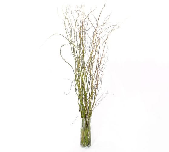 Live Curly Willow Branches 3 Bunches, Willow Branch Outdoor Living