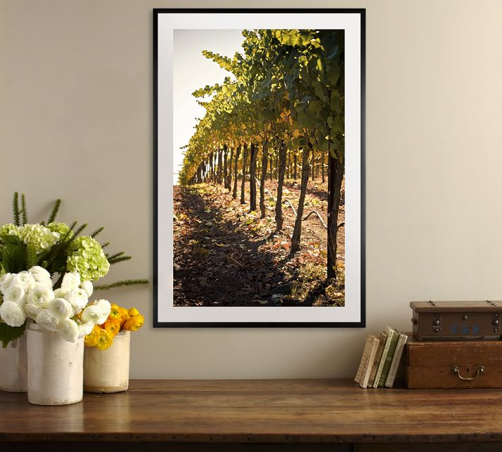 In The Vineyard Framed Print By Ana V Ramirez Pottery Barn