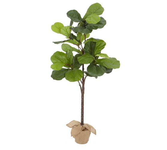 Faux Potted Fiddle Leaf Fig Trees | Pottery Barn