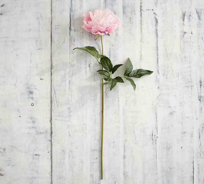 Faux Peony Stems Artificial Flowers Pottery Barn