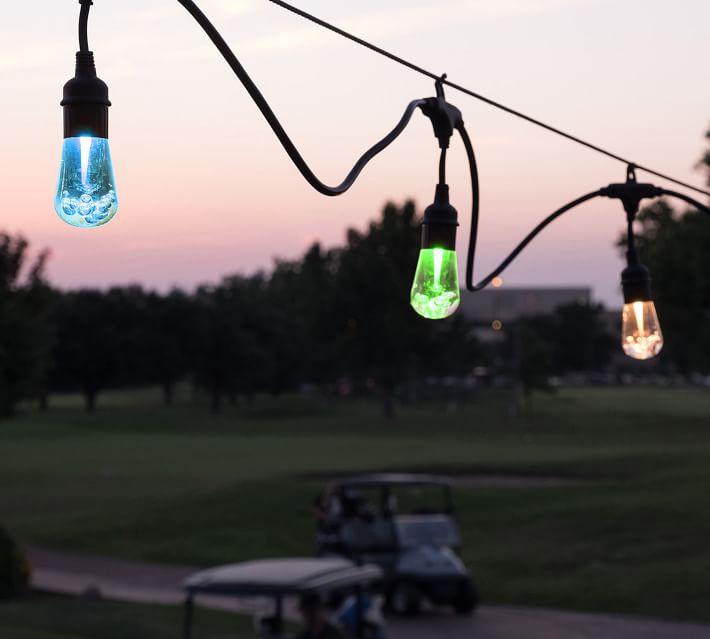 Color Changing Indoor & Outdoor String Lights - Black ...