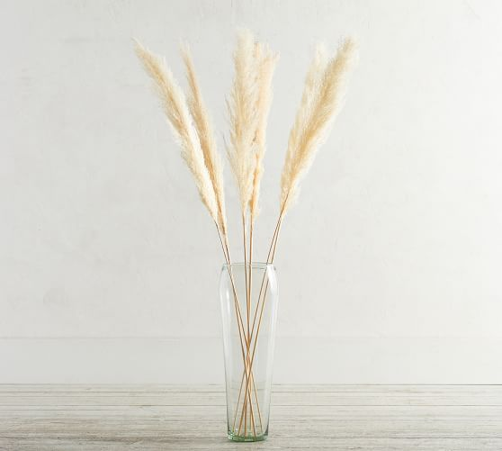 Dried Pampas Grass Branches - Set of 3